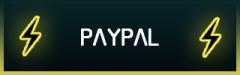 Paypal-panel